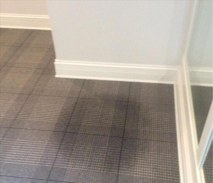 Gray and blue plaid carpet with a water stain in the middle of the floor in a corner with white walls and white trim.