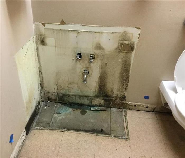 White wall in a bathroom with mold with water pipes and a white toilet.