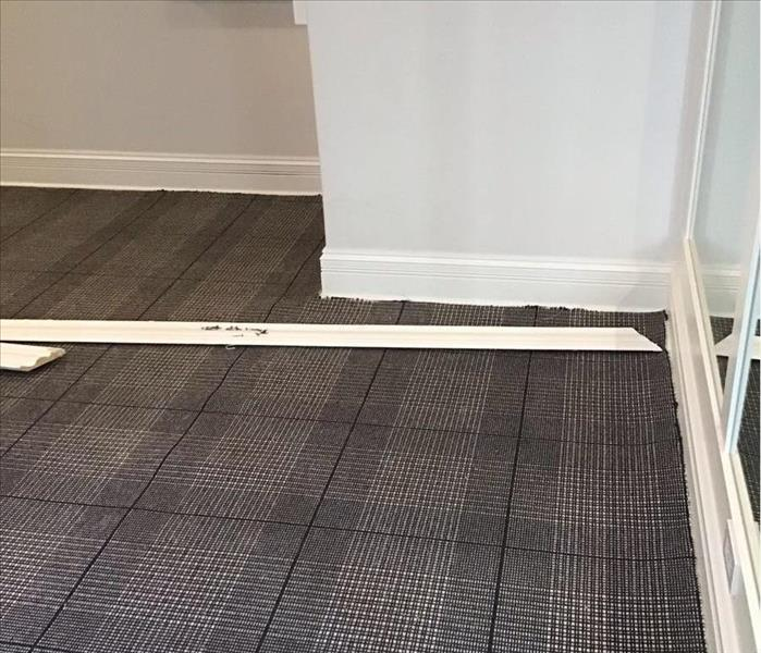 Dry gray and blue carpet on a floor in a corner with white walls and white trim.
