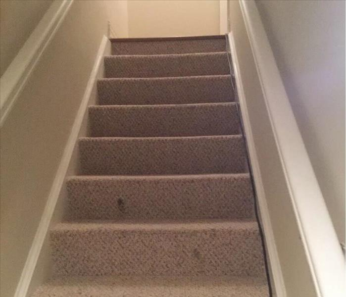 Light brown wet carpet on a stairway with tan walls and white trim.