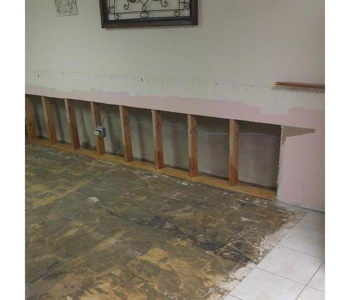 Mold Remediation Barrington, IL 60010 After