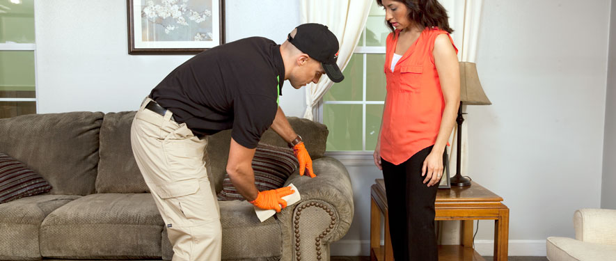Barrington, IL carpet upholstery cleaning